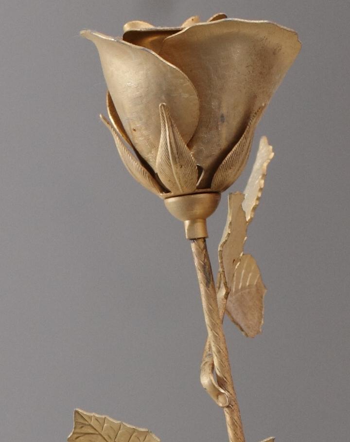 IMAGE: http://gabebalazsphoto.com/misc_photos/flower_crop.jpg